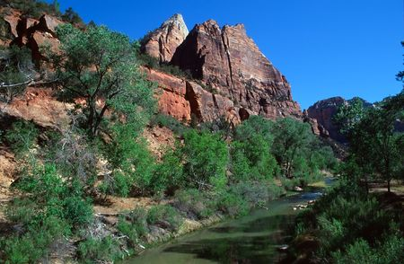 riparian: Zion National Park is a United States National Park located in the Southwestern United States, near Springdale, Utah.