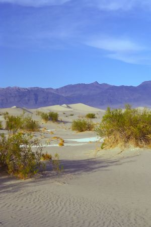 encountered: Stovepipe Wells Dunes, Tucki Mountain, and morning clouds, Death Valley National Park, California. After shooting early farther out in the dunes, I encountered this scene while starting my hike back to my . When I first arrived here the sand was almost