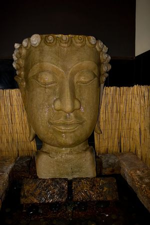 awakened: Buddha means Awakened one or Enlightened one