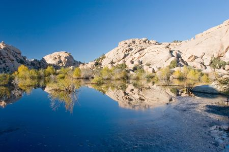 creosote: Barker Dam is a water-storage facility located in Joshua Tree National Park in California. The dam was constructed by early cattlemen, and is situated between Queen Valley and the Wonderland of Rocks near the Wall Street Mill.