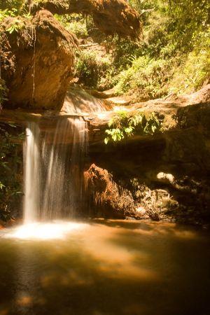 bushwalk: Berry Creek Falls in Big Basin Redwoods State Park, California
