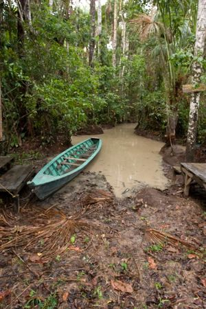 Lake Sandoval is located Tambopata-Candamo which is a nature reserve in the Peruvian Amazon Basin south of the Madre de Dios River Banco de Imagens