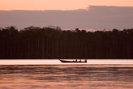 Lake Sandoval is located Tambopata-Candamo which is a nature reserve in the Peruvian Amazon Basin south of the Madre de Dios River Stock Photo