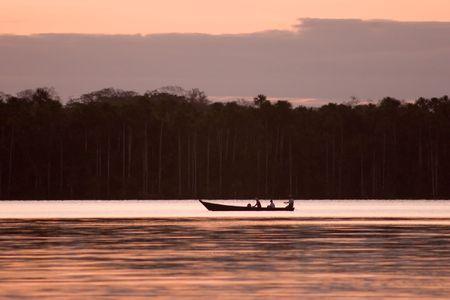 Lake Sandoval ligt Tambopata-Candamo dat is een natuurreservaat in de Peruaanse Amazone Basin ten zuiden van de Madre de Dios rivier