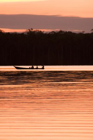 Lake Sandoval is located Tambopata-Candamo which is a nature reserve in the Peruvian Amazon Basin south of the Madre de Dios River Stock Photo - 3261556