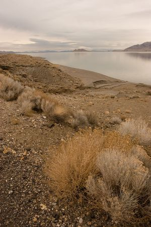 Pyramid Lake is an endorheic salt lake, approximately 188 square miles (487 km²) in area, in the Great Basin in the northwestern part of the U.S. state of Nevada Stok Fotoğraf - 3273200