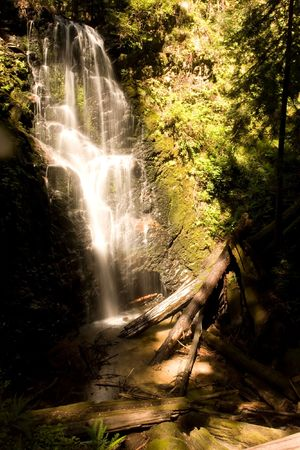 oldest: Big Basin is Californias oldest State Park, established in 1902. The Skyline-to-the-Sea Trail [1] is a 29.5 mile (47.2 km) hiking trail that descends from the ridge of the Santa Cruz Mountains in Northern California to the Pacific Ocean