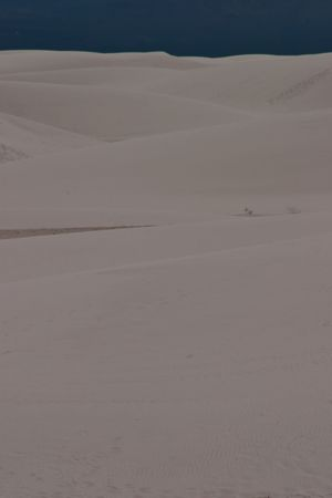 White Sands National Monument is a U.S. National Monument located about 25 km (15 miles) southwest of Alamogordo in western Otero County and northeastern Dona Ana County in the state of New Mexico Stock Photo - 4667611