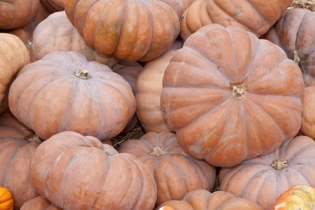 The carving of pumpkins is associated with Halloween in North America where pumpkins are both readily available and much larger photo