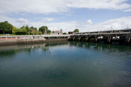 salmon migration: Hiram M. Chittenden Locks are a complex of locks that sit in the middle of Salmon Bay, part of Seattles Lake Washington Ship Canal.