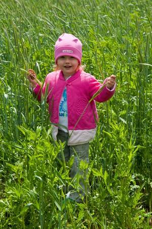 Cute little Caucasian baby girl in pink jacket walking into rye field Stock Photo - 7280292