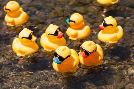 LOS GATOS, CA, Verenigde Staten - 12 juni: De rubberen eendjes zijn kick-off van hun zomer op de 4e jaarlijkse Silicon Valley eend Race in Vasona Lake Park. Los Gatos, CA, Verenigde Staten, 12 juni 2011 Redactioneel