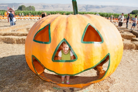 In the United States, the carved pumpkin was first associated with the harvest season in general, long before it became an emblem of Halloween. Stock Photo - 11214895