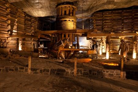 ヴィエリチカ岩塩坑は継続的に世界最古の操業中の塩鉱山の 1 つとして 2007 年まで 13 世紀からの食卓塩を作り出した。