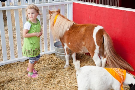 Spelen met dieren in kinderboerderij op een pompoen patch.