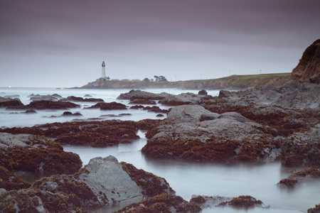 Pacific ocean coast near Pigeon Point Lighthouse. Stock Photo - 13821760