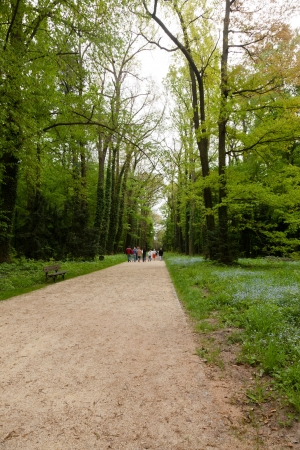 Kornik Arboretum  - the largest and oldest arboretum in Poland. It was founded in the first mid- nineteenth century Stock Photo - 13934900