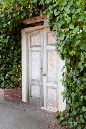 Old wooden door to a secret garden. photo