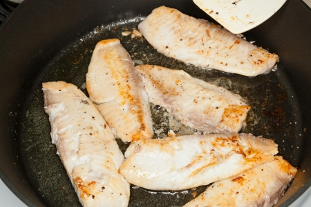 Frying tilapia filets on a large non-stick frying pan. Stock Photo - 14068106