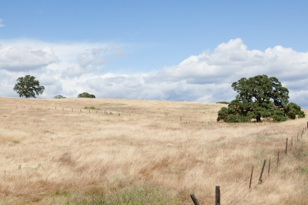 foothills: Sierra foothills around Mariposa in Central Valley, California Stock Photo