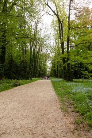 Kornik Arboretum  - the largest and oldest arboretum in Poland. It was founded in the first mid- nineteenth century Stock Photo - 15983176