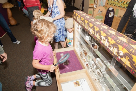 The Junior Museum & Zoo is a place where children and their caregivers come to explore, discover, create and play.