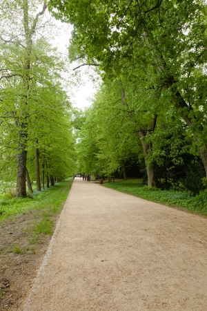 Kornik Arboretum  - the largest and oldest arboretum in Poland. It was founded in the first mid- nineteenth century Stock Photo - 17972759