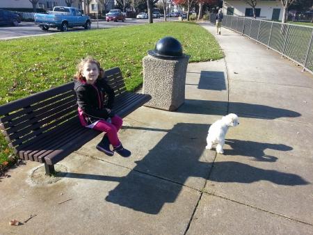 samsung galaxy: Having fun walking a dog to park on sunny day.