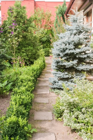 Path in beautifully landscaped garden in summer.