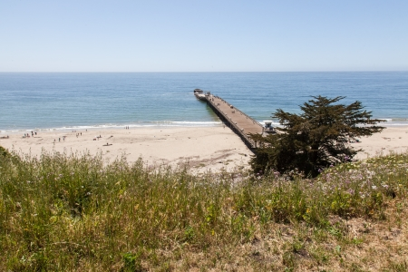 シークリフは約 5 マイル (8 km) 南にサンタクルス アプトスの町で高速道路 1 に位置するカリフォルニア州ビーチ