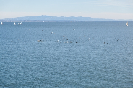 Wiew of the Monterey Bay, the Santa Cruz wharf on sunny day. photo