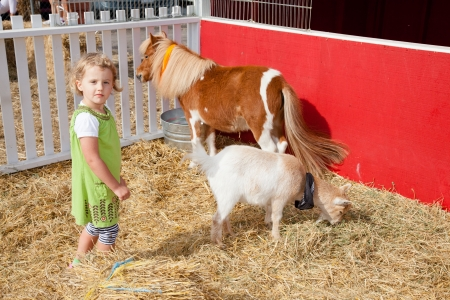Playing with animals in petting zoo on a pumpkin patch. photo