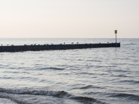 Wooden breakwater in Kolobrzeg on Baltic coast in Poland