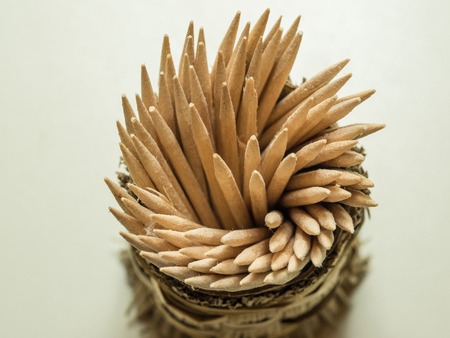 toothpick: Toothpick is a small stick of wood, plastic, bamboo, metal, bone or other substance used to remove detritus from the teeth, usually after a meal.