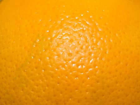 Orange is the fruit of the citrus species Citrus × sinensis in the family Rutaceae.