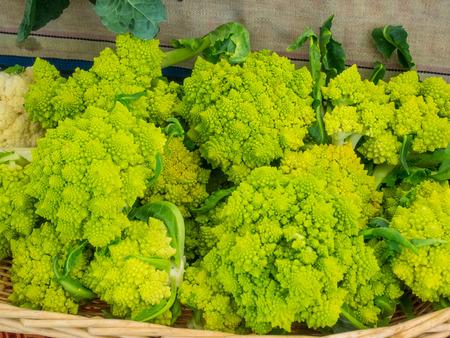 Romanesque cauliflower is an edible flower bud of the species Brassica oleracea. Banco de Imagens