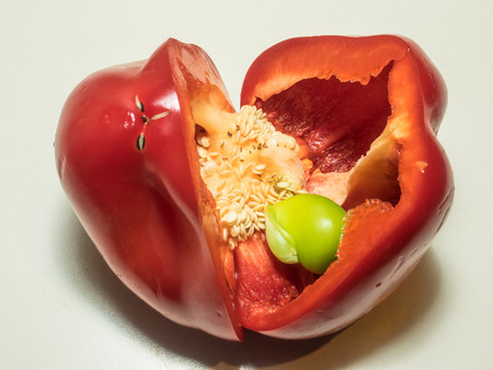 growing inside: Small green bell pepper growing inside a red one