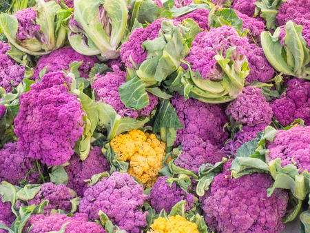 Different color varieties of cauliflower for sale at local farmers market. 版權商用圖片