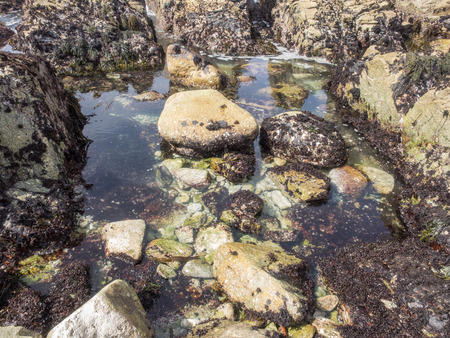Tide pools, or rock pools, are rocky pools on the sea shore which are filled with seawater. Stock Photo