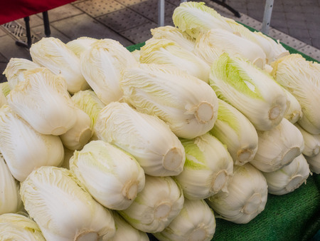 nappa: Pile of organic napa cabbage for sale at local farmers market. Stock Photo