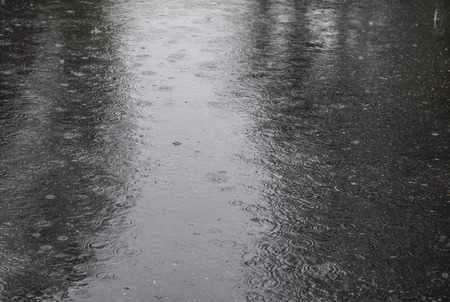 downpour: Heavy rain on the street. Spring downpour falling on a city street.