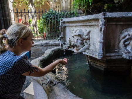 explained: Barcelona Cathedral has a secluded Gothic cloister where 13 white geese are kept, the number explained by the assertion that Eulalia was 13 when she was martyred.
