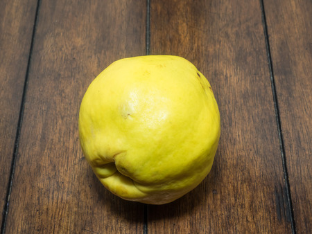 pome: Quince is a small deciduous tree that bears a pome fruit, similar in appearance to a pear, and bright golden-yellow when mature. Stock Photo