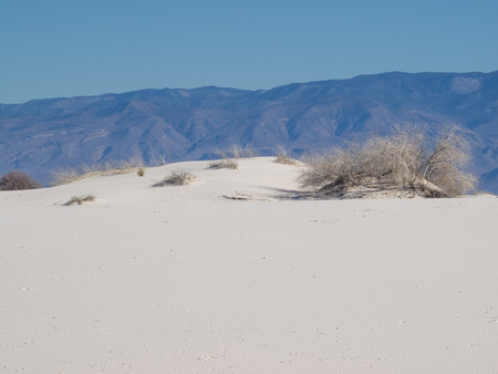 white sands national monument: White Sands National Monument is a field of white sand dunes composed of gypsum crystals