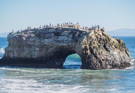 natural bridge state park: Natural Bridges State Beach is a 65-acre (26 ha) California state park in Santa Cruz, California in the United States.