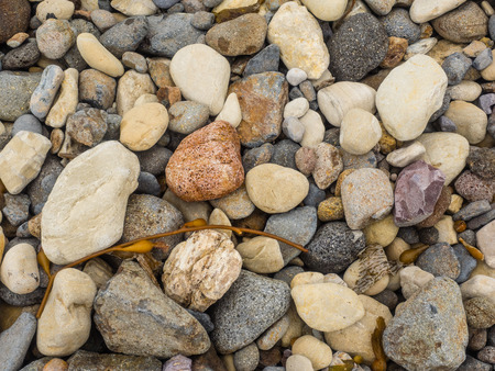 beach shingle: Ciottoli su una spiaggia di ghiaia in Smugglers Cove su Santa Cruz Channel Island