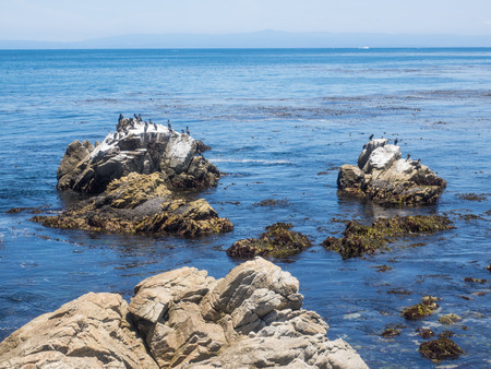 currents: Point Joe on the famous 17 mile drive is a point where seven ocean currents meet. Several ships have met disaster on this rugged point