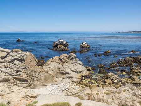 mile: Point Joe on the famous 17 mile drive is a point where seven ocean currents meet. Several ships have met disaster on this rugged point