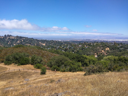 oak trees: View of Silicon Valley from vista point at Edgewood Park in Redwood City, CA