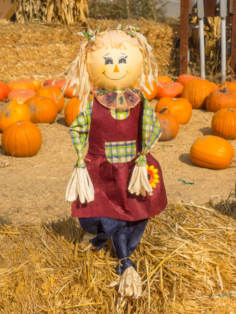 hayman: Scarecrow is a decoy or mannequin in the shape of a human. It is usually dressed in old clothes and placed in open fields to discourage birds such as crows or sparrows from disturbing and feeding on recently cast seed and growing crops.